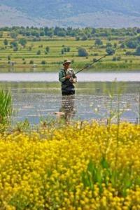 fishing-tourism